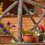 Il Bar in legno e i suoi fiori colorati